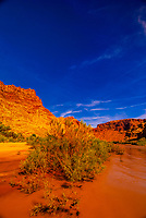 Rapids in Cataract Canyon, the Colorado River in Canyonlands National Park, Utah, USA.