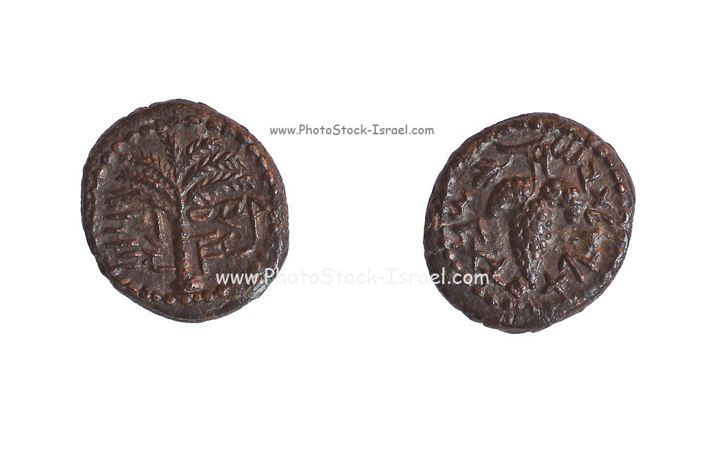 """Bronze Eleazr the Priest coin 132 AD. Left Palm Tree right bunch of grapes wit the inscription """"Year one of the redemption of Israel"""