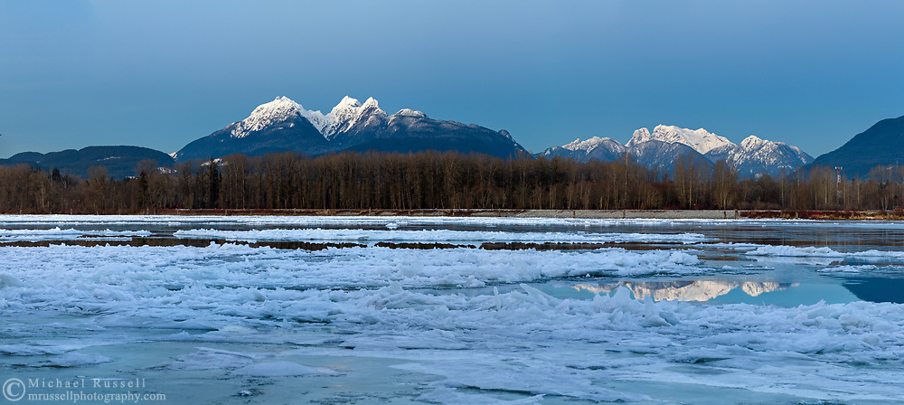 The Golden Ears mountains are a familiar sight from the Fraser Valley (especially Langley and Maple Ridge).  This view is photographed from Brae Island Regional Park's Tavistock Point in Langley, British Columbia with the unusual circumstance of a partly frozen Fraser River in the foreground.  The Golden Ears (Mount Blanshard) are McPhaden Peak, Edge Peak and Blanshard Peak.  Mount Robbie Reid can be seen on the right, and reflected in the Fraser River.