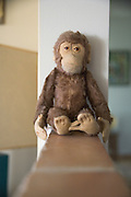 a little monkey doll sitting