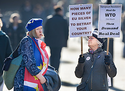 © Licensed to London News Pictures. 14/02/2019. London, UK. A Pro EU supporter argues with a Brexit supporter (R) outside Parliament  ahead of a Brexit vote in the House of Commons later today. Photo credit: Peter Macdiarmid/LNP
