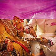 A curtain is placed in front of the bride and groom while they throw ceremonial ashes into the sacred fire, during a Hindu wedding in Delhi. The veil is removed at the auspicious moment, to symbolize the start of their new life as a couple. <br /> Delhi, 2009