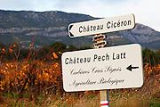 Chateau Ciceron, Ch Pech Latt, Corbieres Crus Signes, Agriculture Biologique, Chateau Pech-Latt. Near Ribaute. Les Corbieres. Languedoc. France. Europe.