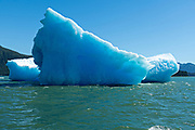 A giant ice berg floating in Frederick Sound near the mouth of LeConte Bay in Petersburg Island, Alaska. The iceberg calved off the nearby LeConte Glacier which is the southernmost tidewater glacier of the Northern Hemisphere.