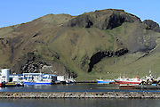 Iceland, Heimaey, the largest island in the Vestmannaeyjar archipelago