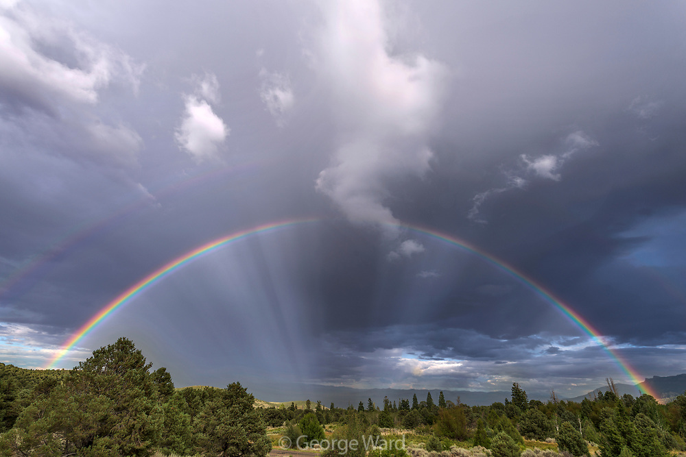 Double Rainbow above Sagebrush and Juniper, Great Basin National Park, Nevada