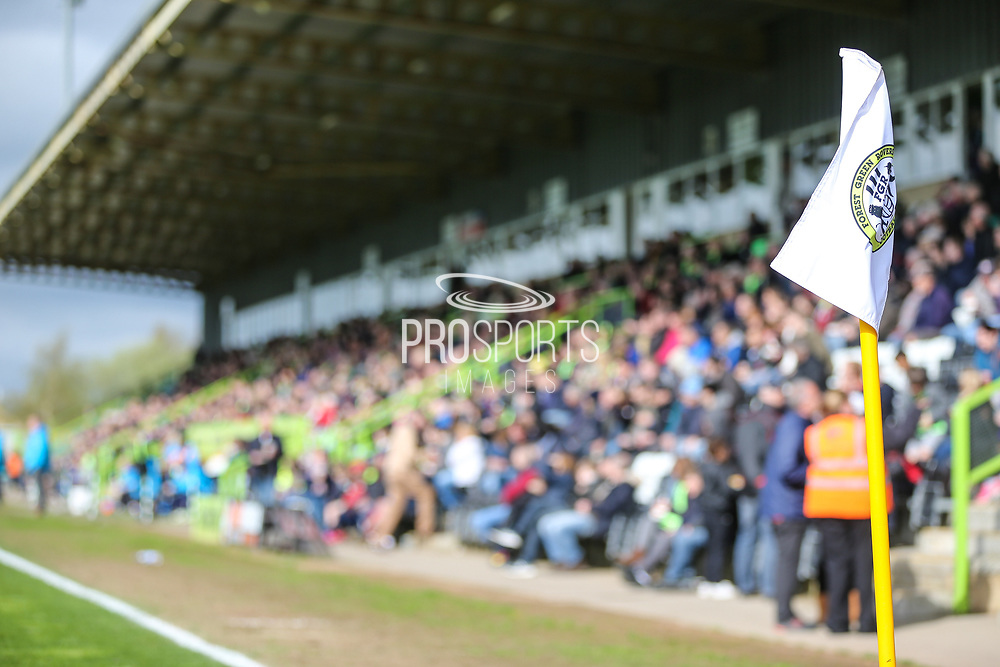 The main stand during the Vanarama National League match between Forest Green Rovers and Chester FC at the New Lawn, Forest Green, United Kingdom on 14 April 2017. Photo by Shane Healey.