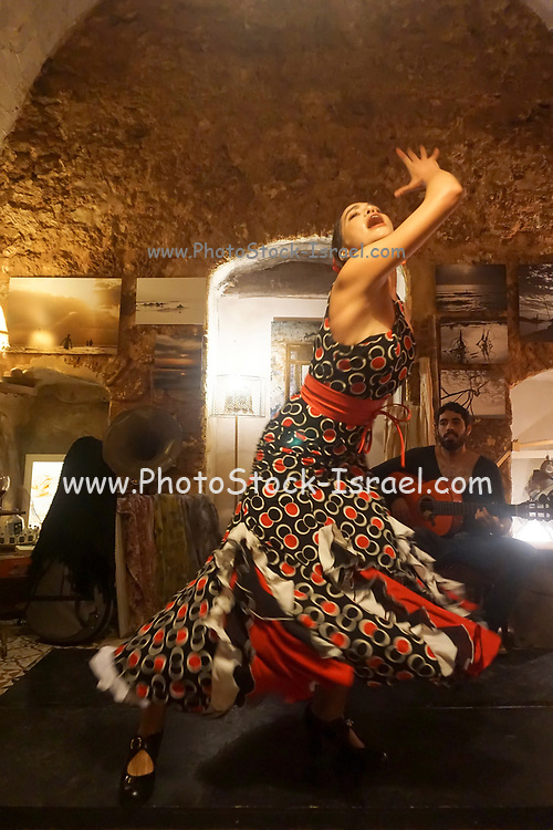 Female Flamenco dancer in a nightclub