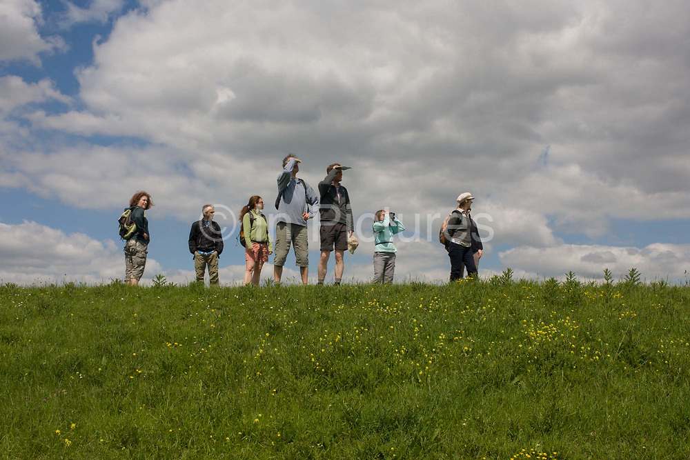 A group of country ramblers walk along the sea defence embankment of Halstow Marshes on the Kent Thames estuary marshes, potentially threatened by the future London airport.  With the panoramic views beyond, the walkers stand still below blue skies and clouds, stopping to spot birdlife on the marshland, on a landscape that could controversially become the site for London's estuary airport, built on reclaimed and marshland on the river Thames, east of the city. Current London mayor Boris Johnson is in faviour of this project to alleviate pressure from other airport hubs, regardless of wildlife (especially a nearby protected bird sanctuary).