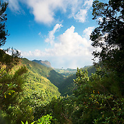 View of mountains and the ocean on the background from a levada at Madeira Island