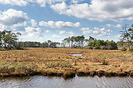 """Chincoteague Island, VirginiaFor IMAGE LICENSING just click on the """"add to cart"""" button above.<br /> <br /> Fine Art archival paper prints for this image as well as canvas, metal and acrylic prints available here:"""