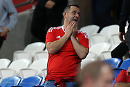A dejected Wales fan looks on at the end of the match. Wales v Rep of Ireland , FIFA World Cup qualifier , European group D match at the Cardiff city Stadium in Cardiff , South Wales on Monday 9th October 2017. pic by Andrew Orchard, Andrew Orchard sports photography