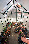 A small greenhouse at the Downtown Value School, a charter school in downtown Los Angeles. The school uses gardens to teach students about gardening and also has a vertical garden, a flower and produce garden that goes around the school grounds and a worm compost bin that students collect for after each meal. Los Angeles, California, USA
