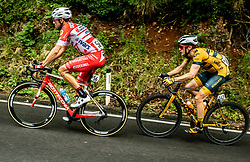 Matteo Montaguti (ITA) of Androni Giocattoli - Sidermec and Benjamin Hill (AUS) of Ljubljana Gusto Santic during 4th Stage of 26th Tour of Slovenia 2019 cycling race between Nova Gorica and Ajdovscina (153,9 km), on June 22, 2019 in Slovenia. Photo by Vid Ponikvar / Sportida