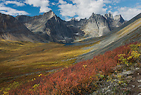 Grizzly Creek valley displaying tundra in full autumn color, Tombstone Territorial Park Yukon Canada