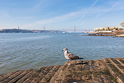 Bridge across river, April 25th Bridge, River Tagus, Lisbon,  Portugal