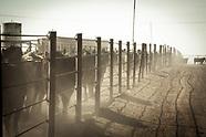 Cowboy - Western - Ranch