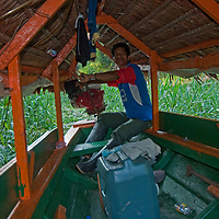 A Yanayacu Indian boat owner steers a specialized propeller motor through thick aquatic vetetation as he navigates tourists up the Yanayacu River in Peru's Amazon Jungle.