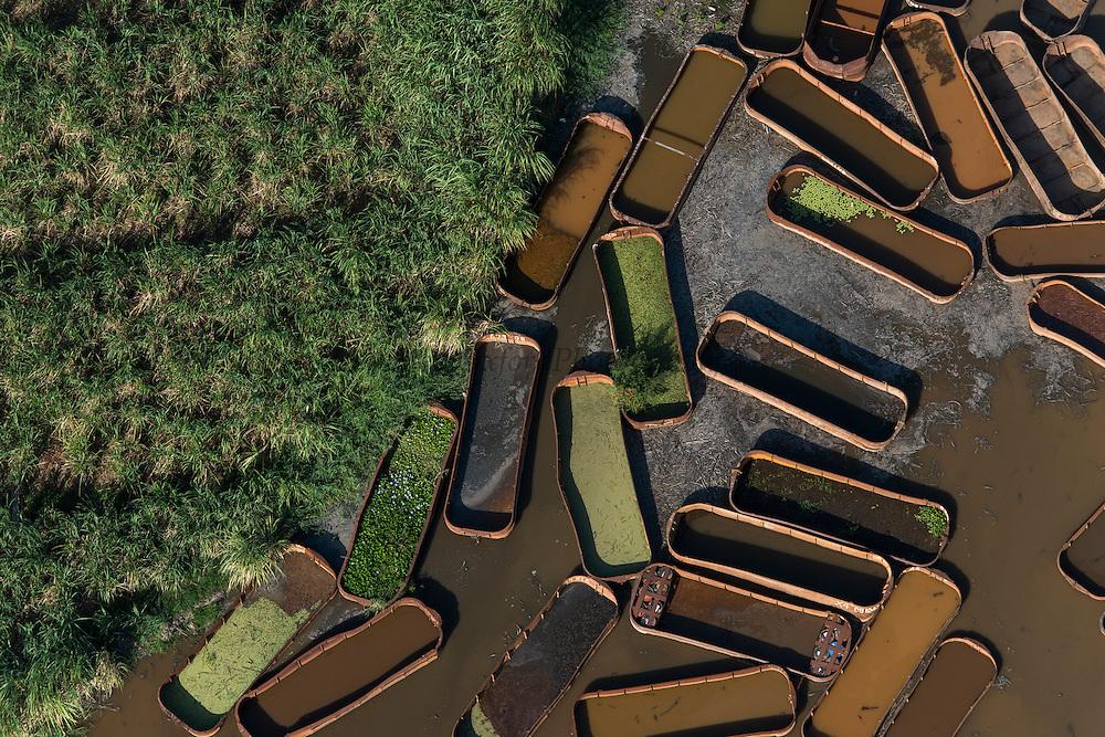 Sugarcane barges (punts)<br /> East GUYANA<br /> South America