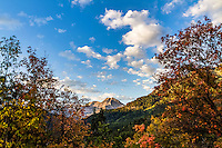 Fall colors surround the valley as Mt. Timpanogos looms above in American Fork Canyon