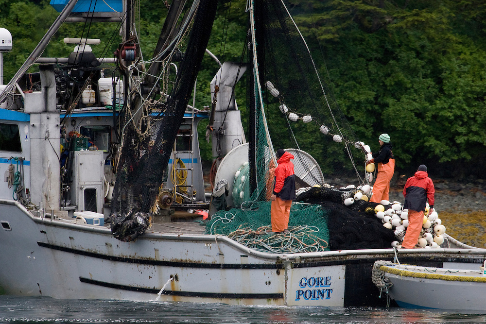 A commercial salmon seiner makes set in Prince William Sound, Alaska