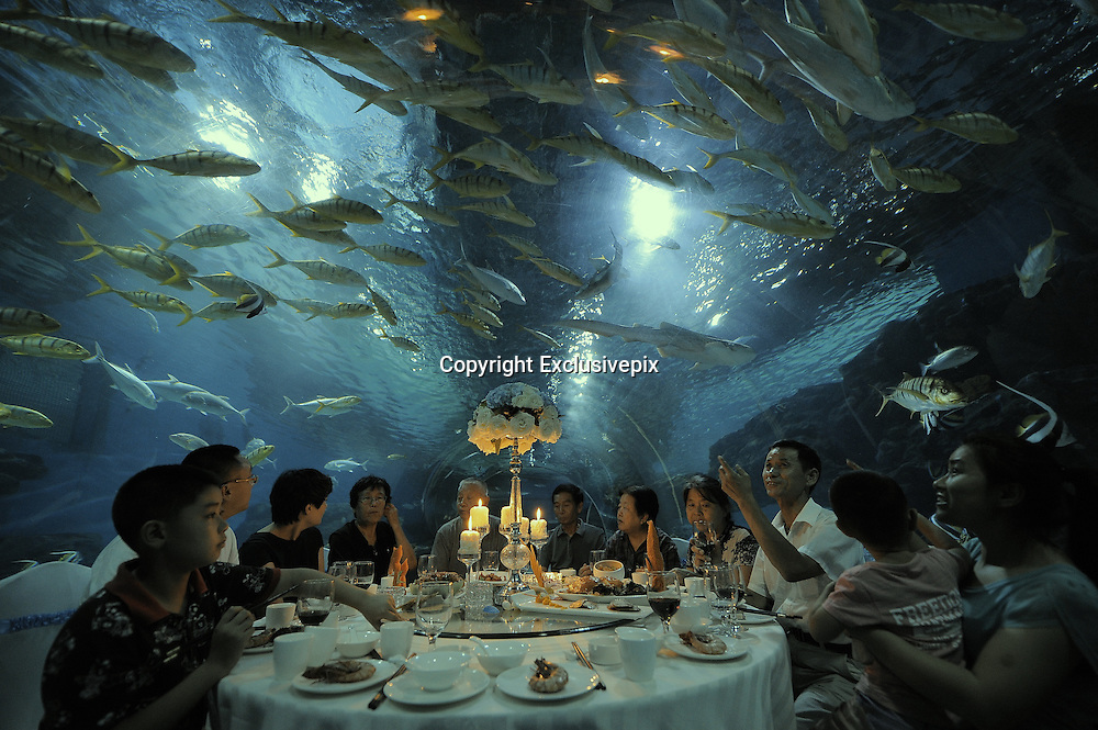 TIANJIN, CHINA - SEPTEMBER 01: (CHINA OUT) <br /> <br /> Having Dinner At Subsea Tunnel <br /> <br /> People have dinner at subsea tunnel of Tianjin Polar Ocean World on September 1, 2014 in Tianjin, China. Tianjin Polar Ocean World held an activity of having dinner at its subsea tunnel to welcome the upcoming Mid-autumn Festival.<br /> ©Exclusivepix