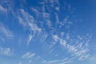 Middletown, New York -Mare's tail cirrus clouds on Sept. 19, 2012.