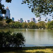 Lake in Lumpini park, Bangkok, Thailand