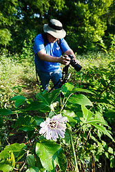 Photographer with passionflower, Big Spring,Great Trinity Forest, Dallas, Texas, USA
