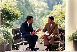 Washington, D.C. - July 7, 1988 -- United States President Ronald Reagan and Vice President George H.W. Bush confer on the Colonnade of the White House in Washington, DC on July 7, 1988 just before attending a lunch with political advisors on campaign strategy. Photo by White House/ CNP/ABACAPRESS.COM