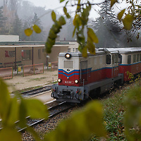 Train arrives to the Children's Railway station Szepjuhaszne in the Buda Hills in Budapest, Hungary on November 15, 2014. ATTILA VOLGYI