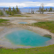 Yellowstone Lake Thermal  Pools- Yellowstone National Park