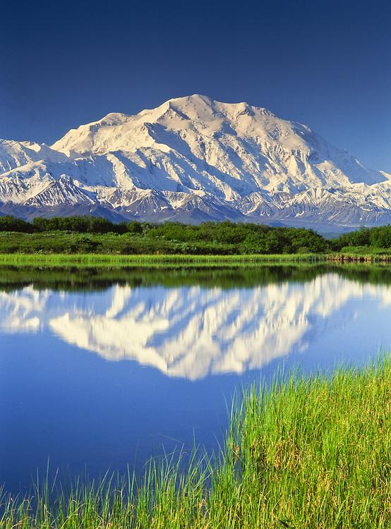 Mt. McKinley reflected in Reflection Pond near Wonder Lake. Denali National Park. Alaska.