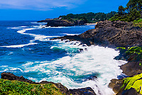 Whale Cove, Depoe Bay, Oregon USA.