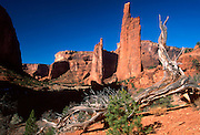 ARIZONA, CANYON DE CHELLY 'Spider Rock', Navajo Reservation