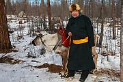 A Tsaatan reindeer herder and a reindeer (Rangifer tarandus), Khovsgol Province, Mongolia