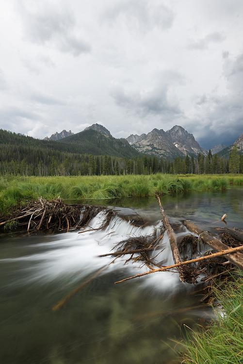 Beaver dam on Fishhook Creek in Idaho's Sawtooth Mountains.