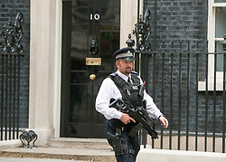 © Licensed to London News Pictures. 03/09/2014. London, UK A firearms officer at Downing Street during the COBRA meeting on 3rd September 2014. Photo credit : Stephen Simpson/LNP