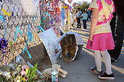 A memorial was created at Mesa Verde Elementary School where student, Christina Taylor Green, 9, was a student.  Green was killed during an assassination attempt on Arizona Congresswoman, Gabrielle Giffords, in Tucson, Arizona, USA, on January 8, 2011.  Hannah Radtke, 7, writes a message.