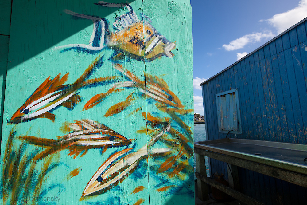 """Hand painted fish on restaurant in Nassau Bahamas in an area known as 'Fishfry"""" were over a dozen casual restaurants popular with locals  for fresh fish and conch."""