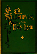 Gilded letters on the green cover of the book Wild flowers of the Holy Land: Fifty-Four Plates Printed In Colours, Drawn And Painted After Nature. by Mrs. Hannah Zeller, (Gobat); Tristram, H. B. (Henry Baker), and Edward Atkinson, Published in London by James Nisbet & Co 1876