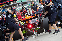 November 10, 2017 - Sao Paulo, Sao Paulo, Brazil - 33 MAX VERSTAPPEN (NED) of Red Bull Racing, during the free training day for the Formula One Grand Prix of Brazil at Interlagos circuit, in Sao Paulo, Brazil. The grand prix will be celebrated next Sunday, November 12. (Credit Image: © Paulo Lopes via ZUMA Wire)