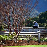USA, California, Carmel. Holman Ranch Garden.