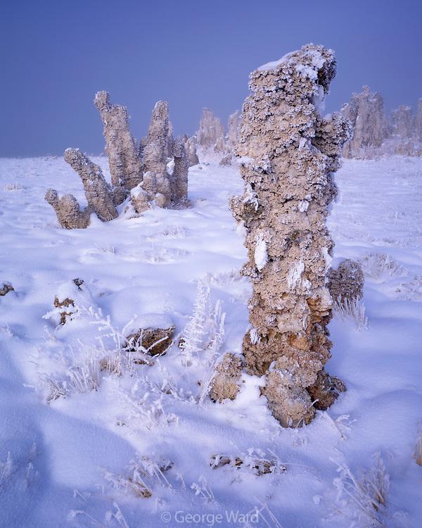 Tufa Formations in Winter, Mono Lake, Mono Basin National Forest Scenic Area, California