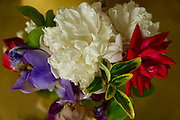 Floral arrangements, Peony, Iris and Rose