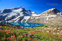 Wildflowers at Thunderwater Lake in the Purcell Mountains south of Golden, BC