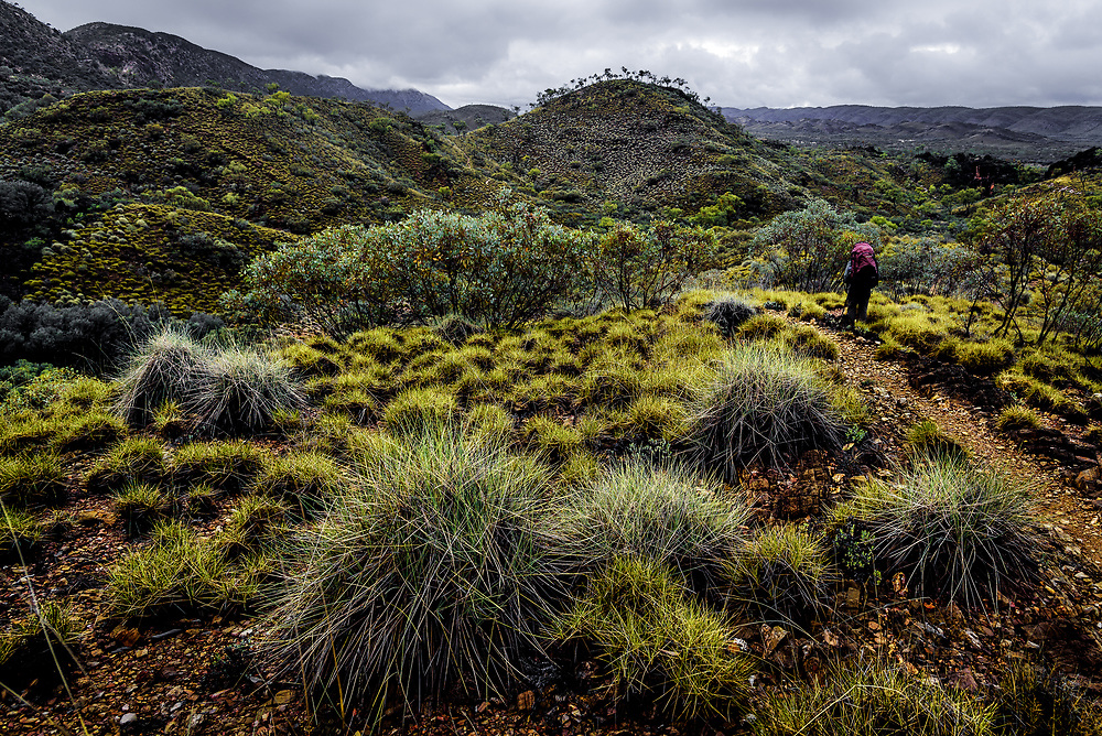 Ellery Creek foothills at West Macdonnell Ranges, Northern Territory