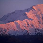 Denali National Park, Alpenglow on Mount McKinley in Denali National Park.  Alaska.