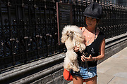 Woman wearing a famous original or remake of an 1980s Vivienne Westwood Buffalo hat carries her pet poodle dog along Piccadilly on 26th June 2020 in London, United Kingdom.