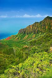 Kalalau Valley, the largest valley on Na Pali coast, Kauai, Hawaii, Pacific Ocean
